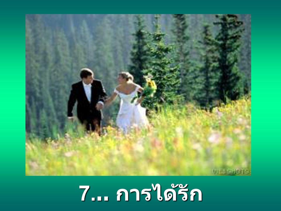 7... การได้รัก