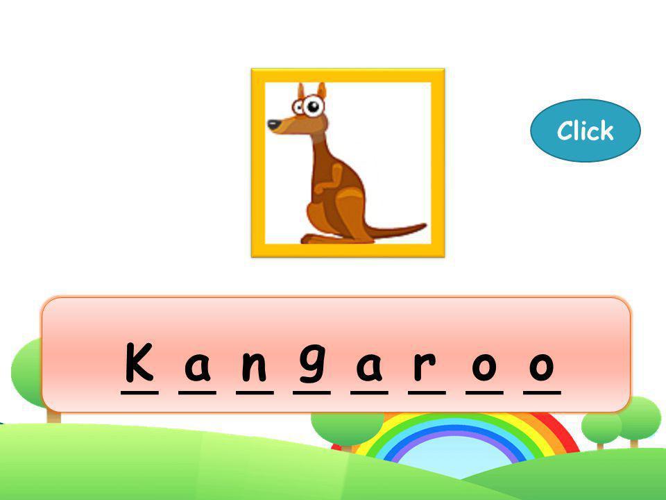 Kangaroo Next