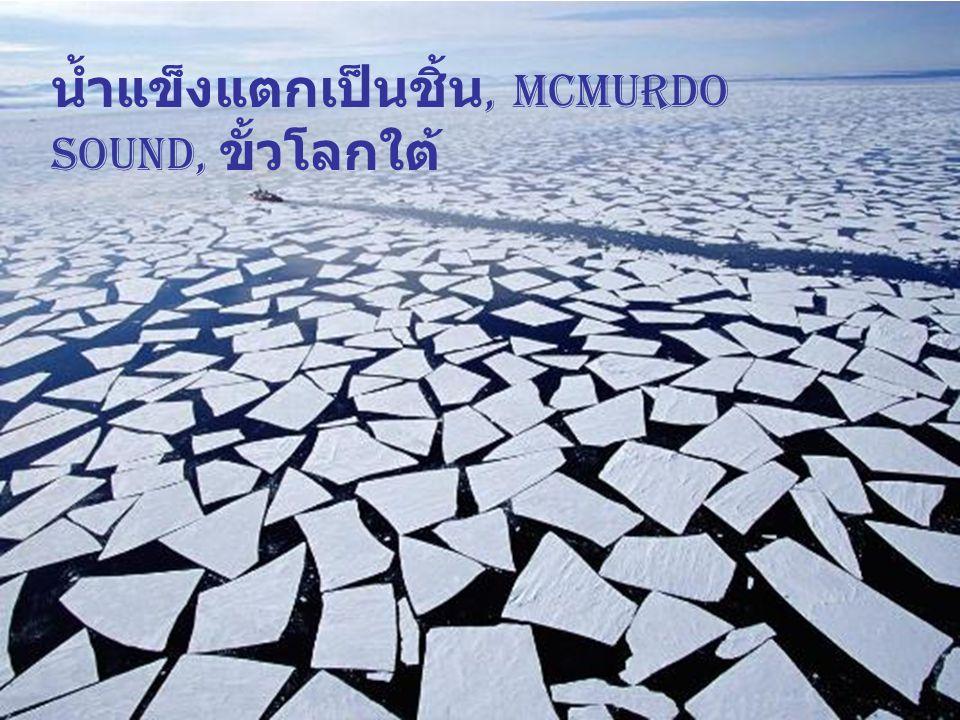 เรือตัดน้ำแข็ง ขั้วโลก ใต้