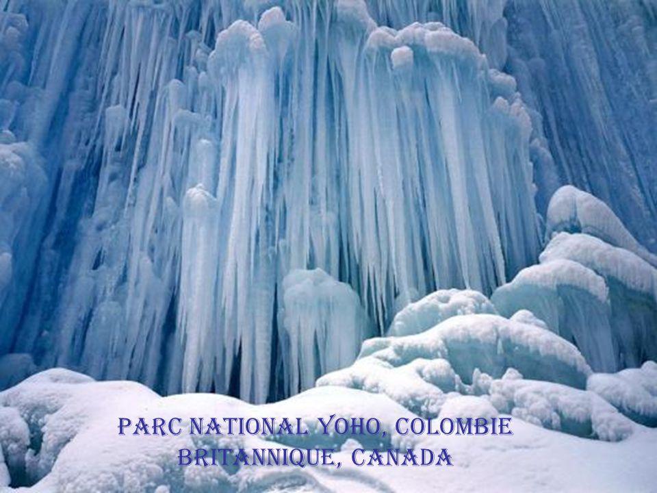 ภูเขา Selkirk, Colombie Britannique, Canada