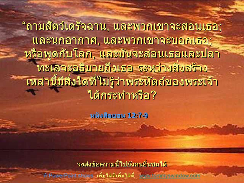 … เพื่อเรียนจากสิ่งสร้างของพระเจ้า คุณควรใช้ เวลาที่จะสังเกตและปล่อยให้พระเจ้าได้เผยให้ เห็นสิ่งที่สวยงามที่พระเป็นเจ้าได้กระทำ … เพื่อเรียนจากสิ่งสร้างของพระเจ้า คุณควรใช้ เวลาที่จะสังเกตและปล่อยให้พระเจ้าได้เผยให้ เห็นสิ่งที่สวยงามที่พระเป็นเจ้าได้กระทำ เธอไม่จำเป็นต้องเป็น นักวิทยาศาสตร์ เธอไม่จำเป็นต้องเป็น นักวิทยาศาสตร์