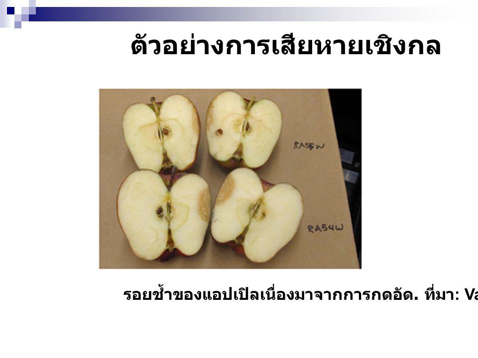 ตัวอย่างการเสียหายเชิงกล รอยช้ำของแอปเปิลเนื่องมาจากการกดอัด. ที่มา : Varith, 2001.