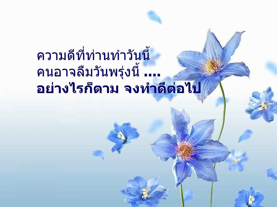 ถ้าท่านพบความสงบสุขในจิตใจ คนอาจอิจฉาท่าน.... อย่างไรก็ตาม จงมีความสงบสุขในจิตใจต่อไป