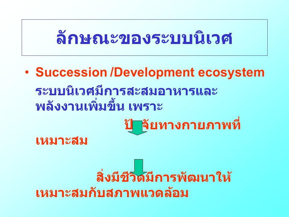 ลักษณะของระบบนิเวศ •Succession /Development ecosystem ระบบนิเวศมีการสะสมอาหารและ พลังงานเพิ่มขึ้น เพราะ ปัจจัยทางกายภาพที่ เหมาะสม สิ่งมีชีวิตมีการพัฒ