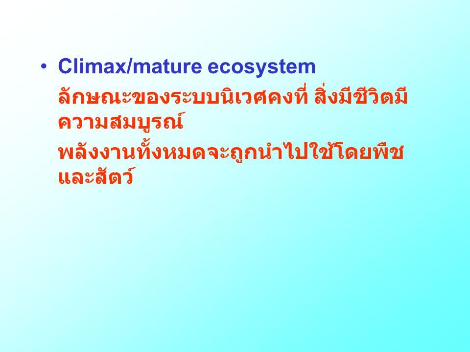 •Climax/mature ecosystem ลักษณะของระบบนิเวศคงที่ สิ่งมีชีวิตมี ความสมบูรณ์ พลังงานทั้งหมดจะถูกนำไปใช้โดยพืช และสัตว์