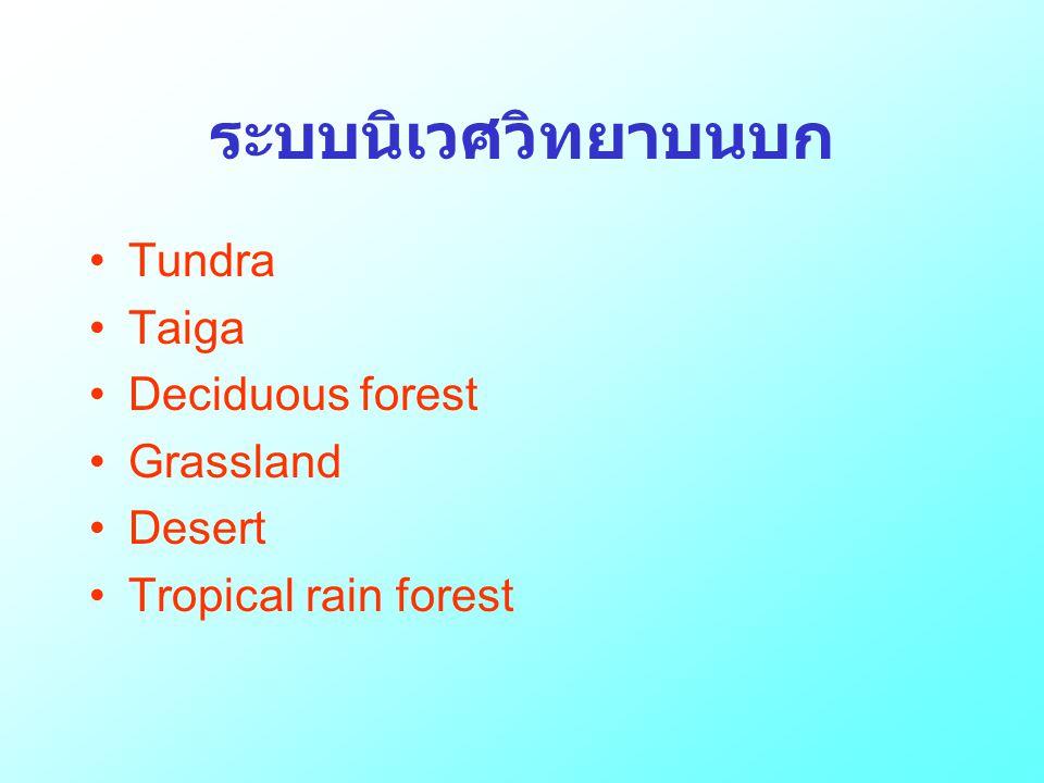 ระบบนิเวศวิทยาบนบก •Tundra •Taiga •Deciduous forest •Grassland •Desert •Tropical rain forest