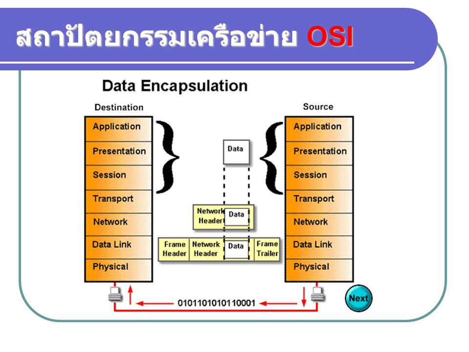 สถาปัตยกรรมเครือข่าย OSI
