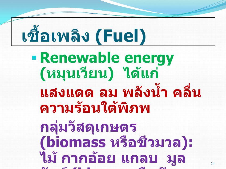 เชื้อเพลิง (Fuel)  Renewable energy ( หมุนเวียน ) ได้แก่ แสงแดด ลม พลังน้ำ คลื่น ความร้อนใต้พิภพ กลุ่มวัสดุเกษตร (biomass หรือชีวมวล ): ไม้ กากอ้อย แกลบ มูล สัตว์ (biogas หรือก๊าซ ชีวภาพ ) 14