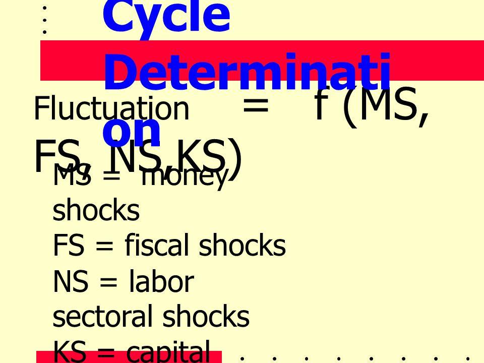 Fluctuation = f (MS, FS, NS,KS) MS = money shocks FS = fiscal shocks NS = labor sectoral shocks KS = capital sectoral shocks Cycle Determinati on