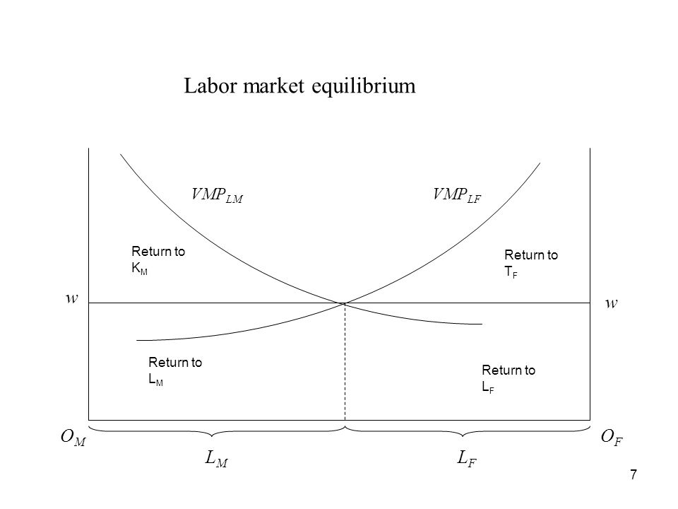 Equilibrium –Equilibrium wage in the manufacturing sector : MPL M x P M = w –Equilibrium wage in the food sector : MPL F x P F = w