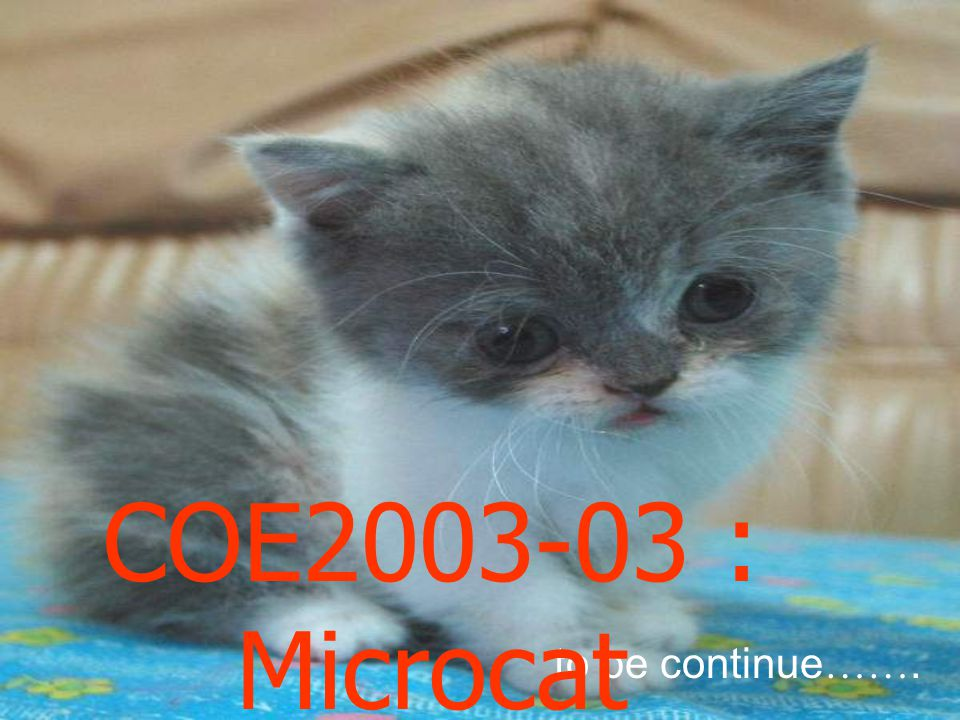 to be continue ……. COE2003-03 : Microcat