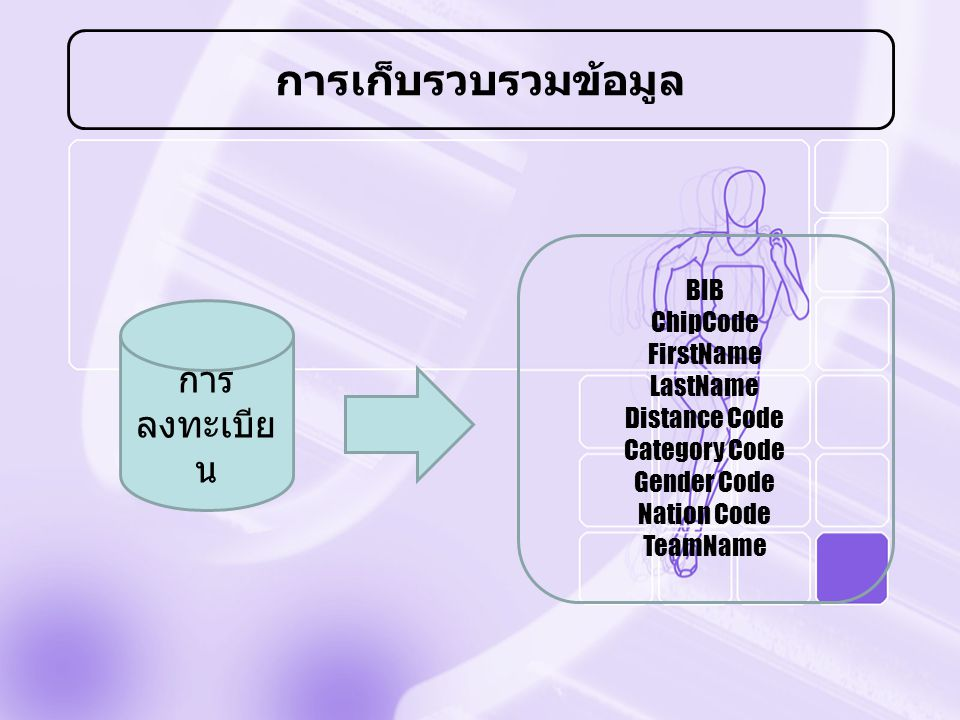 การเก็บรวบรวมข้อมูล การ ลงทะเบีย น BIB ChipCode FirstName LastName Distance Code Category Code Gender Code Nation Code TeamName