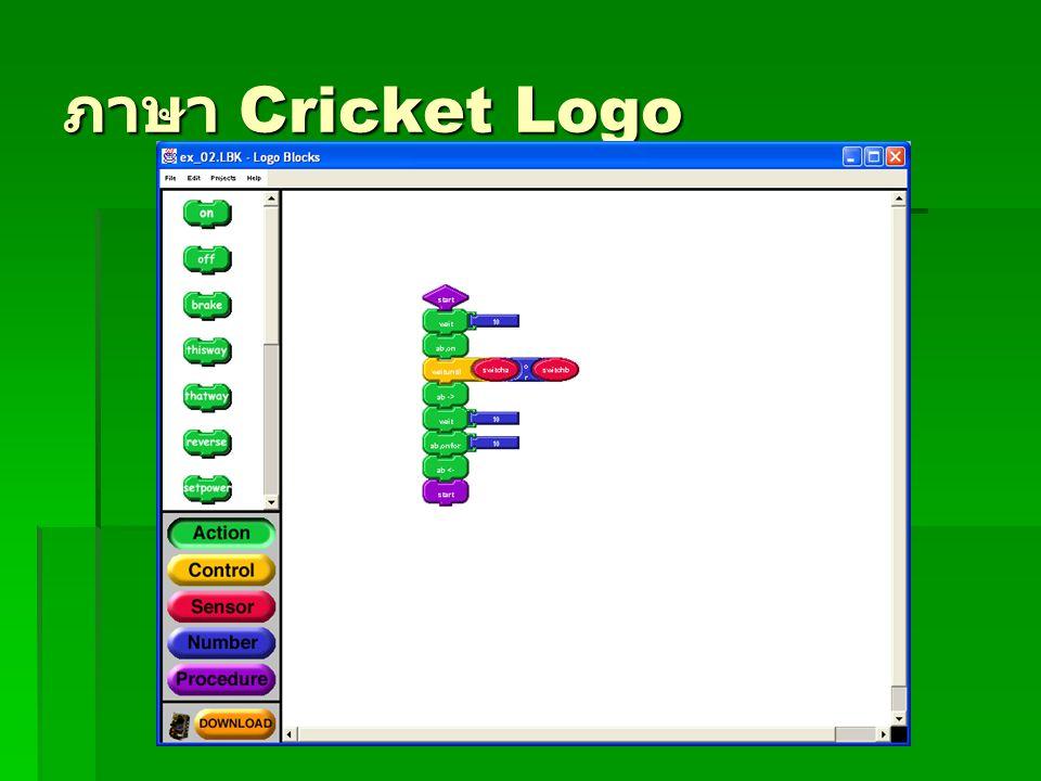 ภาษา Cricket Logo