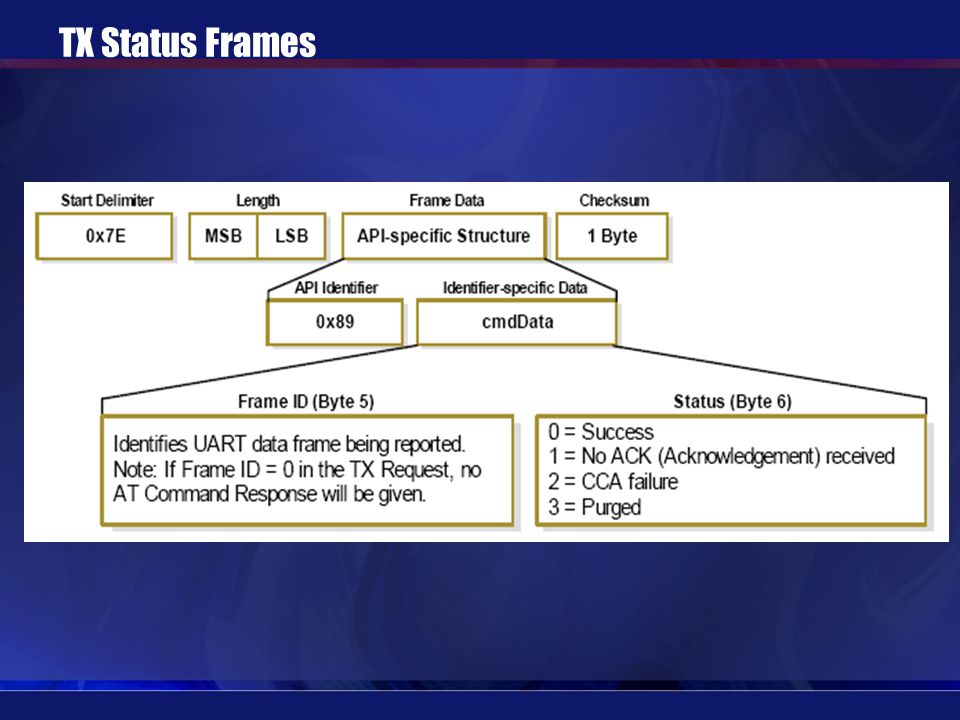 TX Status Frames
