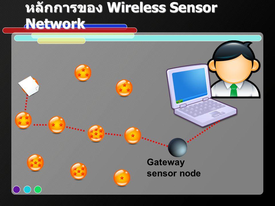 หลักการของ Wireless Sensor Network Gateway sensor node