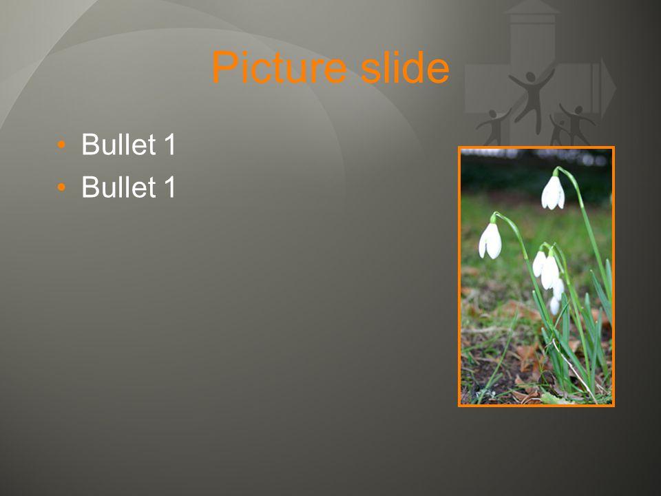 Picture slide •Bullet 1