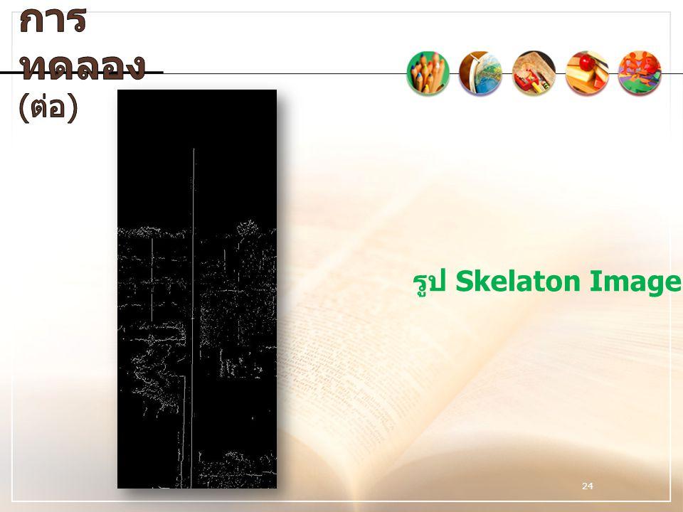 24 รูป Skelaton Image