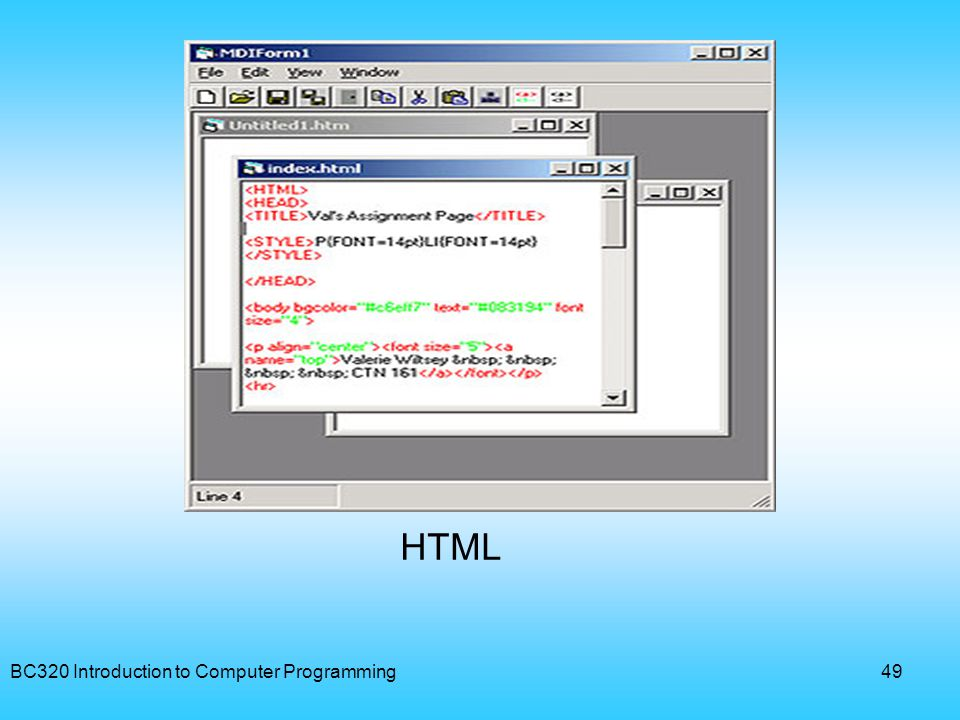 BC320 Introduction to Computer Programming49 HTML