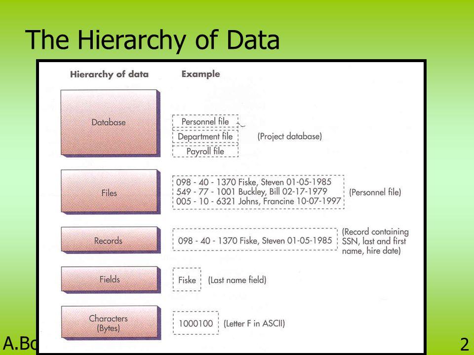 A.Bootsara Prakobtham BC424 Information Technology 12 แบบจำลองเชิงลดหลั่น (Hierarchical Database Model) • แสดงด้วยผังต้นไม้ที่มองจากบนลงล่าง (Upside-down) • มีองค์ประกอบคือ Segment หรือ Node •Segment บนสุด เรียกว่า Root •Segment ที่อยู่ลำดับสูงกว่า Segment อื่น ๆ เรียกว่า Parent •Segment ที่อยู่ลำดับต่ำกว่า Segment อื่น ๆ เรียกว่า Children •Segment ที่เป็น Parent มีลูกได้หลาย Segment •Segment ที่เป็น Children มีแม่ได้เพียง 1