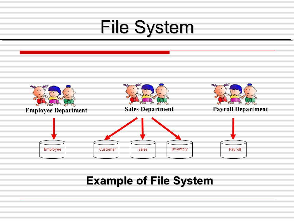 Employee Employee Department Customer Sales Inventory Sales Department Sales Department Payroll Payroll Department Payroll Department File System Exam