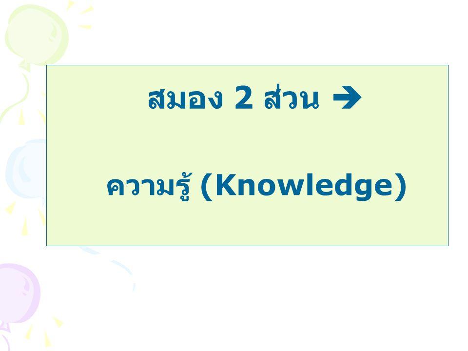 ความรู้ (Knowledge) สมอง 2 ส่วน 