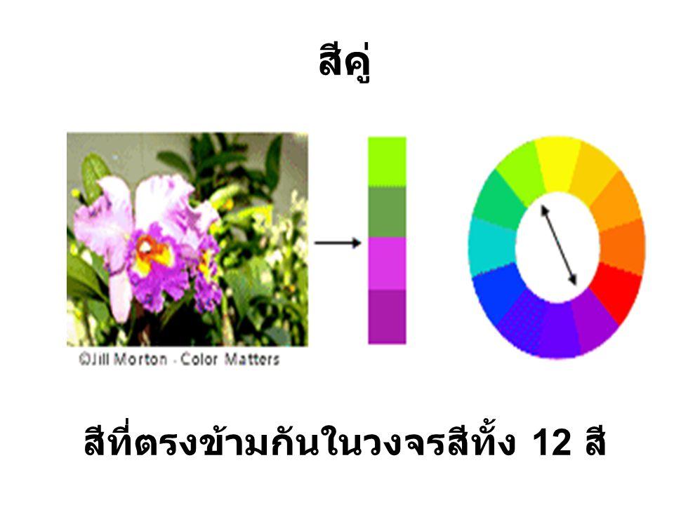 สีคู่ สีที่ตรงข้ามกันในวงจรสีทั้ง 12 สี