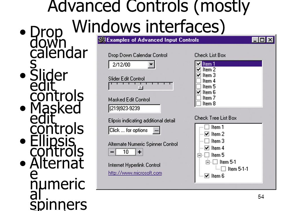 54 Advanced Controls (mostly Windows interfaces) •Drop down calendar s •Slider edit controls •Masked edit controls •Ellipsis controls •Alternat e nume