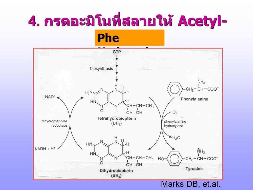 4. กรดอะมิโนที่สลายให้ Acetyl-CoA Phe, Tyr Marks DB, et.al. p.608, 1996