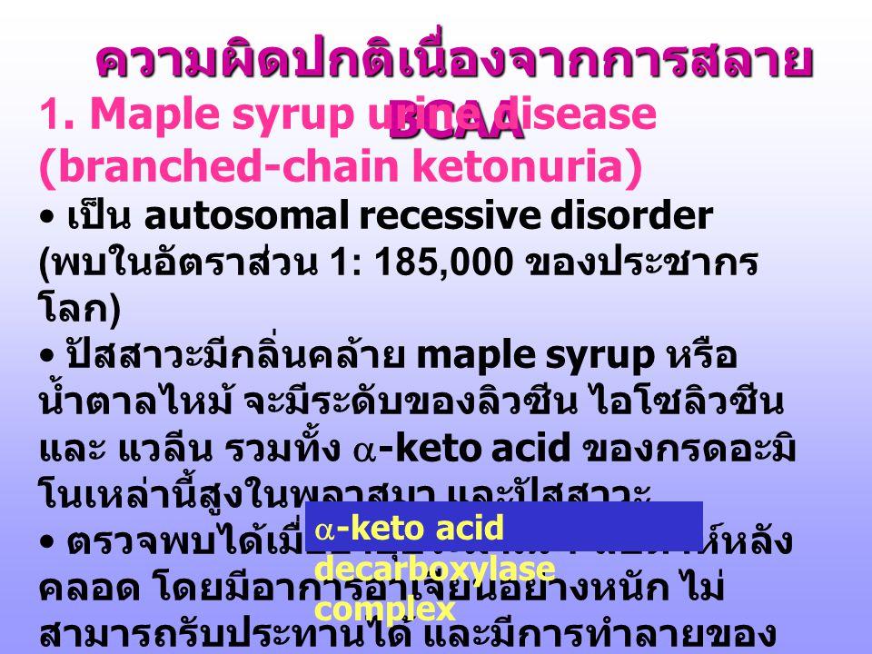 6. การสลายกรดอะมิโน BCAA 6. การสลายกรดอะมิโน BCAA Leu, Ile, Val Marks DB, et.al. p.606, 1996