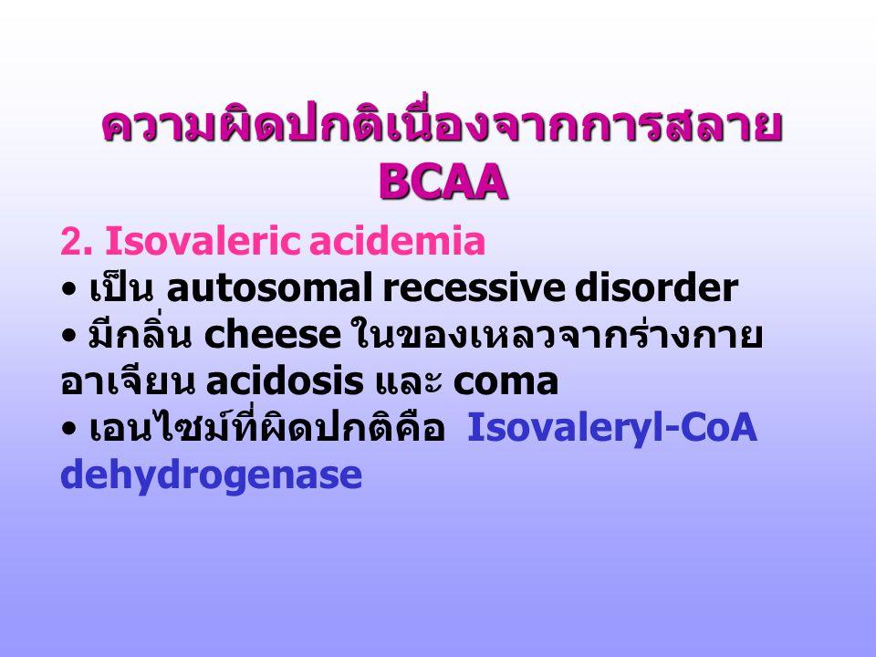 ความผิดปกติเนื่องจากการสลาย BCAA 1. Maple syrup urine disease (branched-chain ketonuria) • เป็น autosomal recessive disorder ( พบในอัตราส่วน 1: 185,00