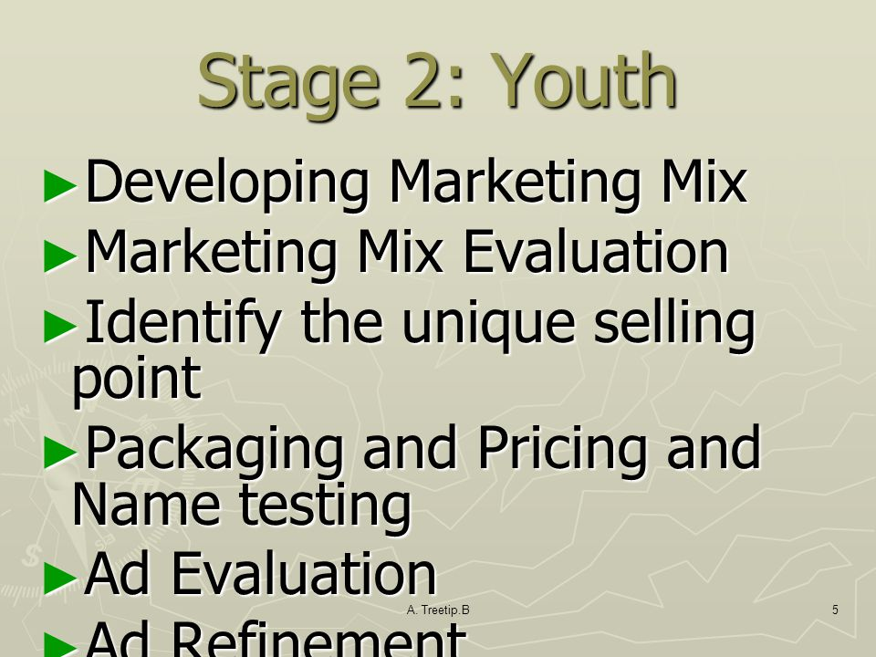 A. Treetip.B5 Stage 2: Youth ► Developing Marketing Mix ► Marketing Mix Evaluation ► Identify the unique selling point ► Packaging and Pricing and Nam