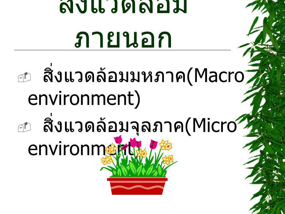สิ่งแวดล้อม ภายนอก  สิ่งแวดล้อมมหภาค (Macro environment)  สิ่งแวดล้อมจุลภาค (Micro environment)