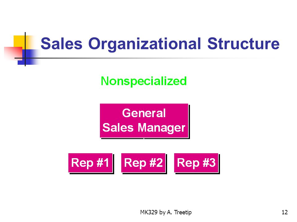 MK329 by A. Treetip12 Sales Organizational Structure