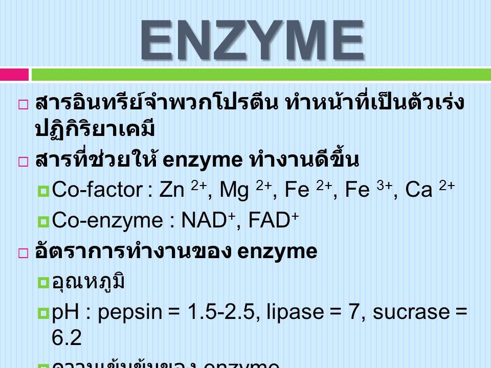 ENZYME  สารอินทรีย์จำพวกโปรตีน ทำหน้าที่เป็นตัวเร่ง ปฏิกิริยาเคมี  สารที่ช่วยให้ enzyme ทำงานดีขึ้น  Co-factor : Zn 2+, Mg 2+, Fe 2+, Fe 3+, Ca 2+  Co-enzyme : NAD +, FAD +  อัตราการทำงานของ enzyme  อุณหภูมิ  pH : pepsin = 1.5-2.5, lipase = 7, sucrase = 6.2  ความเข้มข้นของ enzyme  ความเข้มข้นของ substrate