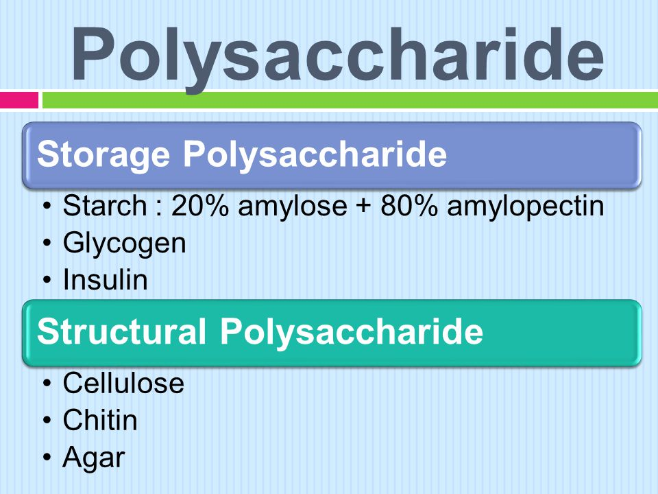 Polysaccharide Storage Polysaccharide •Starch : 20% amylose + 80% amylopectin •Glycogen •Insulin Structural Polysaccharide •Cellulose •Chitin •Agar