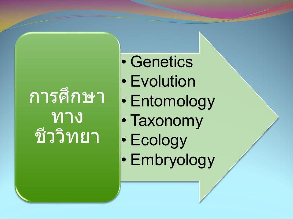 •Genetics •Evolution •Entomology •Taxonomy •Ecology •Embryology การศึกษา ทาง ชีววิทยา