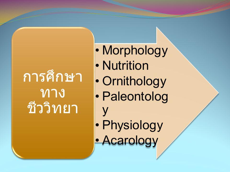•Morphology •Nutrition •Ornithology •Paleontolog y •Physiology •Acarology การศึกษา ทาง ชีววิทยา
