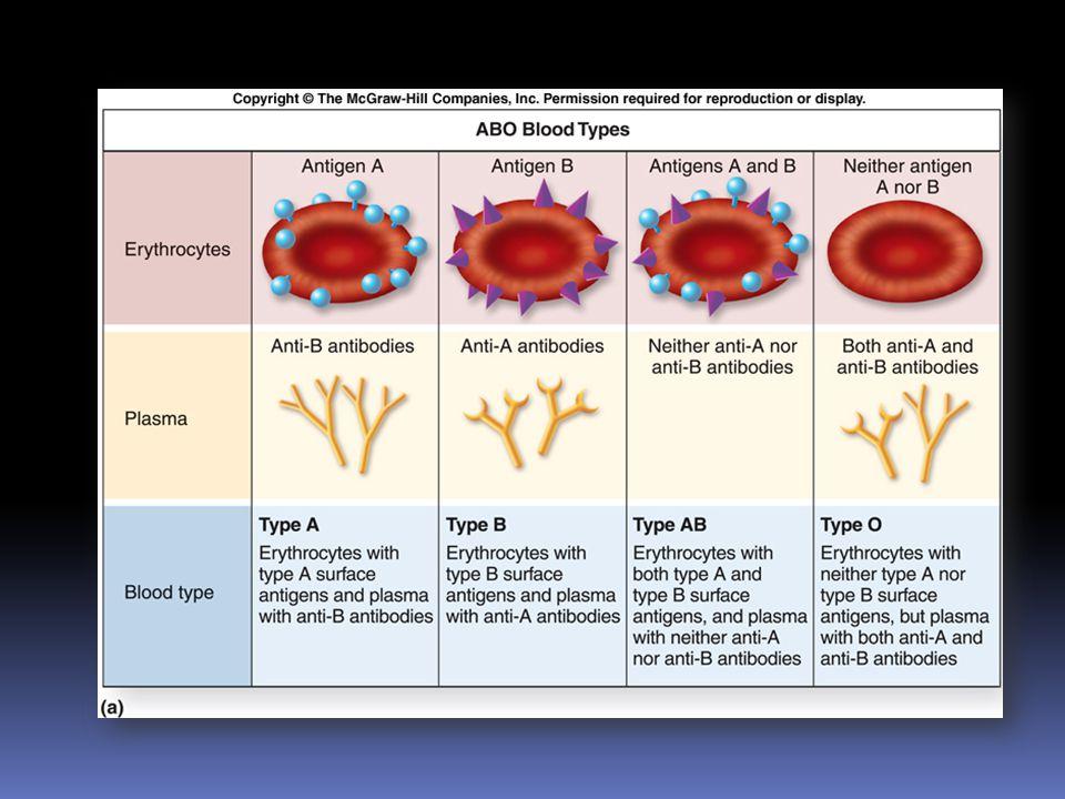 ระบบภูมิคุ้มกันของร่างกาย กลไกทำลายสิ่งแปลกปลอมที่เข้ามา แบบไม่เฉพาะเจาะจง  การป้องกันภายนอกโดยผิวหนังและเยื่อเมือก  การป้องกันภายในโดยเม็ดเลือดขาว กลไกทำลายสิ่งแปลกปลอมที่จำเพาะ แต่ละชนิด  การสร้าง antibody ต่อต้าน