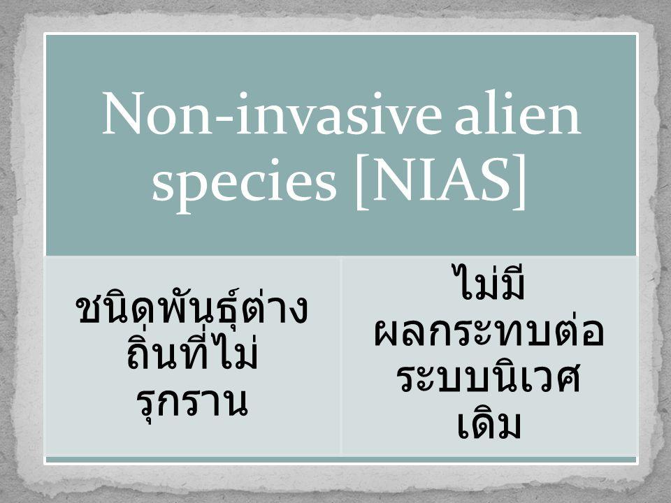 Non-invasive alien species [NIAS] ชนิดพันธุ์ต่าง ถิ่นที่ไม่ รุกราน ไม่มี ผลกระทบต่อ ระบบนิเวศ เดิม