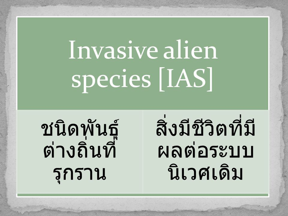 Invasive alien species [IAS] ชนิดพันธุ์ ต่างถิ่นที่ รุกราน สิ่งมีชีวิตที่มี ผลต่อระบบ นิเวศเดิม