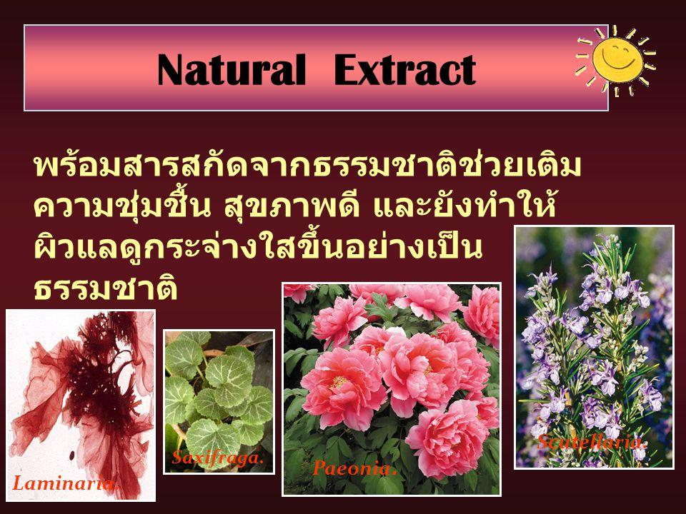 พร้อมสารสกัดจากธรรมชาติช่วยเติม ความชุ่มชื้น สุขภาพดี และยังทำให้ ผิวแลดูกระจ่างใสขึ้นอย่างเป็น ธรรมชาติ Natural Extract Laminaria. Saxifraga. Paeonia