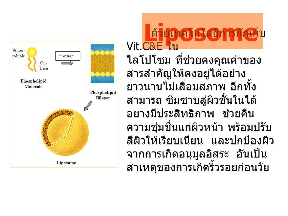 Liposome ด้วยเทคโนโลยีการกักเก็บ Vit.C&E ใน ไลโปโซม ที่ช่วยคงคุณค่าของ สารสำคัญให้คงอยู่ได้อย่าง ยาวนานไม่เสื่อมสภาพ อีกทั้ง สามารถ ซึมซาบสู่ผิวชั้นใน