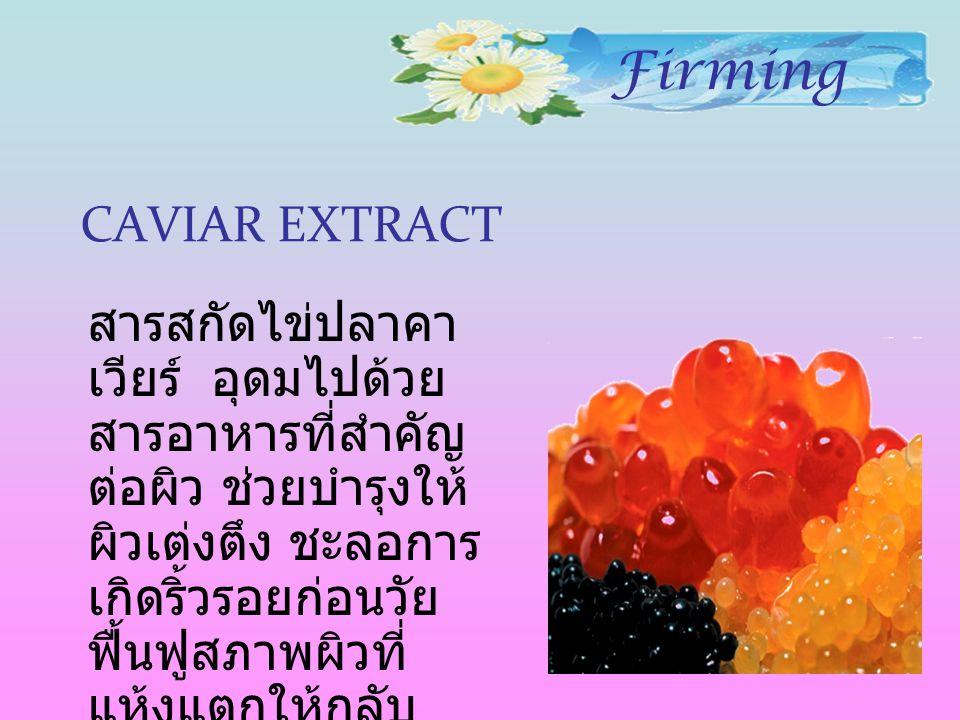 CAVIAR EXTRACT สารสกัดไข่ปลาคา เวียร์ อุดมไปด้วย สารอาหารที่สำคัญ ต่อผิว ช่วยบำรุงให้ ผิวเต่งตึง ชะลอการ เกิดริ้วรอยก่อนวัย ฟื้นฟูสภาพผิวที่ แห้งแตกให