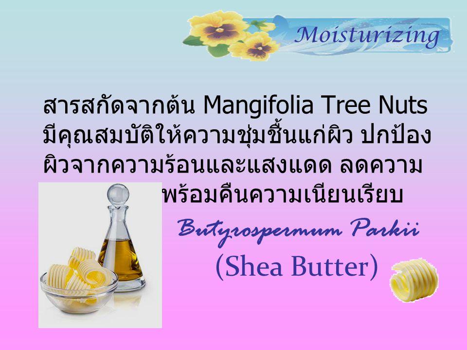 Butyrospermum Parkii (Shea Butter) สารสกัดจากต้น Mangifolia Tree Nuts มีคุณสมบัติให้ความชุ่มชื้นแก่ผิว ปกป้อง ผิวจากความร้อนและแสงแดด ลดความ หยาบกร้าน