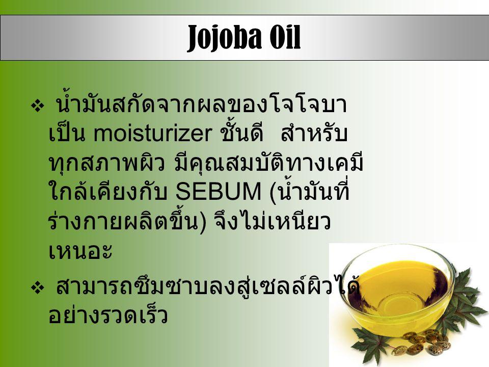  น้ำมันสกัดจากผลของโจโจบา เป็น moisturizer ชั้นดี สำหรับ ทุกสภาพผิว มีคุณสมบัติทางเคมี ใกล้เคียงกับ SEBUM ( น้ำมันที่ ร่างกายผลิตขึ้น ) จึงไม่เหนียว