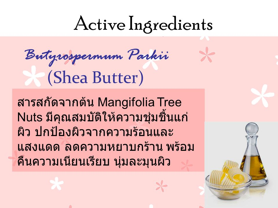 Active Ingredients สารสกัดจากต้น Mangifolia Tree Nuts มีคุณสมบัติให้ความชุ่มชื้นแก่ ผิว ปกป้องผิวจากความร้อนและ แสงแดด ลดความหยาบกร้าน พร้อม คืนความเนียนเรียบ นุ่มละมุนผิว Butyrospermum Parkii (Shea Butter)