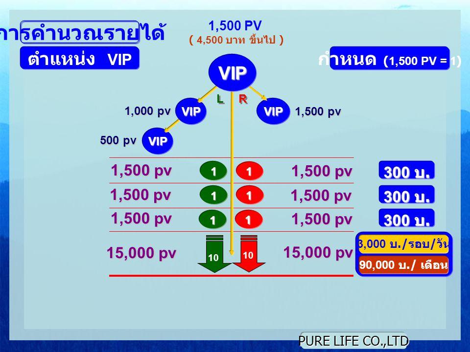 PURE LIFE CO.,LTD VIP VIP VIP L L R R 1 1 10 1,500 PV ( 4,500 บาท ขึ้นไป ) การคำนวณรายได้ ตำแหน่ง VIP กำหนด (1,500 PV = 1) 1,000 pv 500 pv 1,500 pv 300 บ.