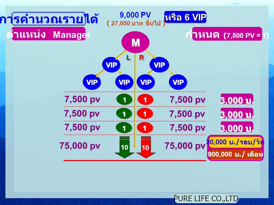 PURE LIFE CO.,LTD L L R R 1 1 9,000 PV ( 27,000 บาท ขึ้นไป ) การคำนวณรายได้ ตำแหน่ง Manager กำหนด (7,500 PV = 1) 7,500 pv 3,000 บ.