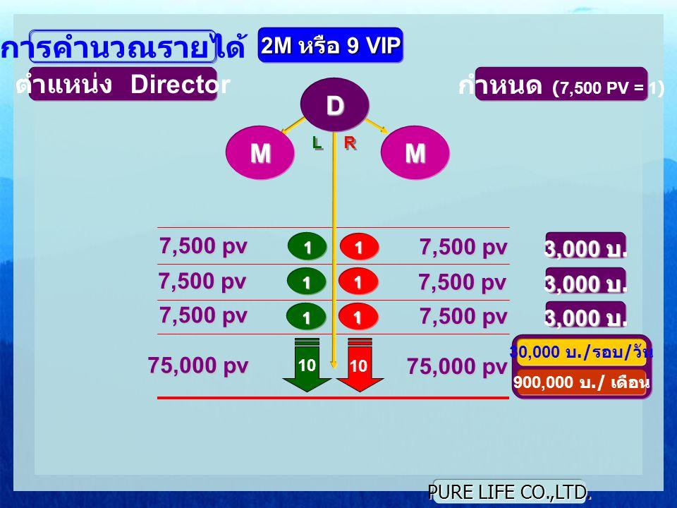 PURE LIFE CO.,LTD. L L R R 1 1 10 การคำนวณรายได้ ตำแหน่ง Director กำหนด (7,500 PV = 1) 7,500 pv 3,000 บ. 7,500 pv 1 1 1 1 3,000 บ. D 2M หรือ 9 VIP 3,0