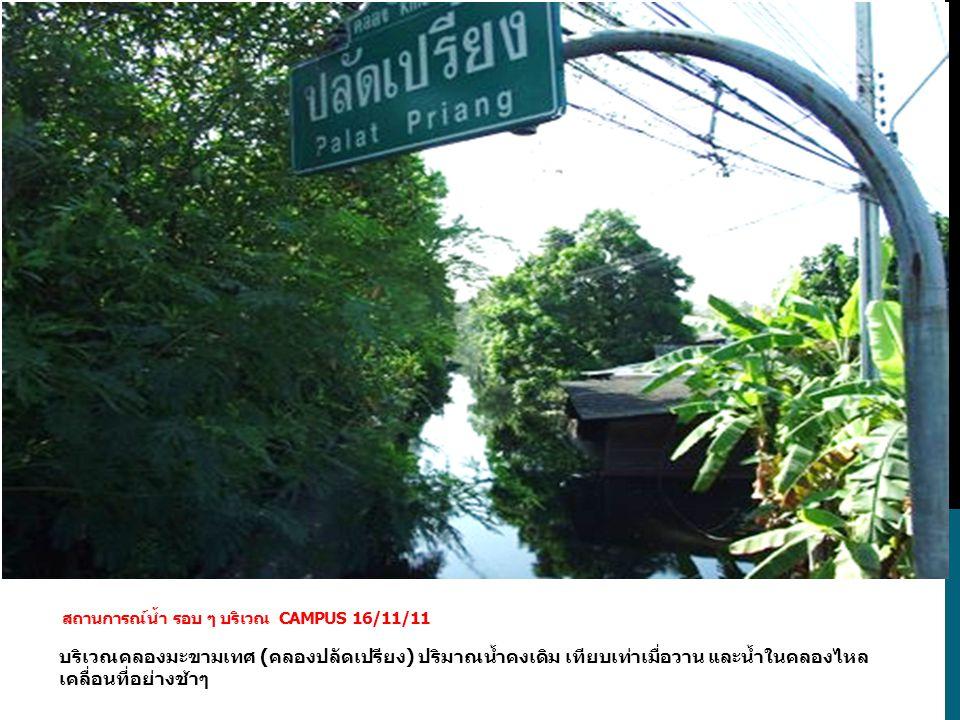 บริเวณคลองมะขามเทศ (คลองปลัดเปรียง) ปริมาณน้ำคงเดิม เทียบเท่าเมื่อวาน และน้ำในคลองไหล เคลื่อนที่อย่างช้าๆ สถานการณ์น้ำ รอบ ๆ บริเวณ CAMPUS 16/11/11